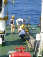 Medsalt OGS Explora Cuise, Baleares July 2015 (credits Angelo Camerlenghi)