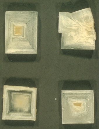 Laboratory-made crystals of NaCl encasing the haloarchaeon, Halorubrum saccharovorum. The cloudiness of the halite (NaCl) crystals is due to the large number of brine inclusions. Each crystal is ca. 1 cm square, © Terry J. McGenity. (For more details see: McGenity TJ & Oren A (2012) Hypersaline environments. In Life at Extremes: Environments, Organisms and Strategies for Survival. EM Bell (ed.) CAB International, UK. pp. 402-437)