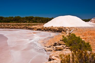 The red pond on the left is saturated with NaCl, and has a visible halite crust. The mound of harvested salt is about 2.5 m high, © Rafael Bosch. (For more details see: McGenity TJ & Oren A (2012) Hypersaline environments. In Life at Extremes: Environments, Organisms and Strategies for Survival. EM Bell (ed.) CAB International, UK. pp. 402-437)